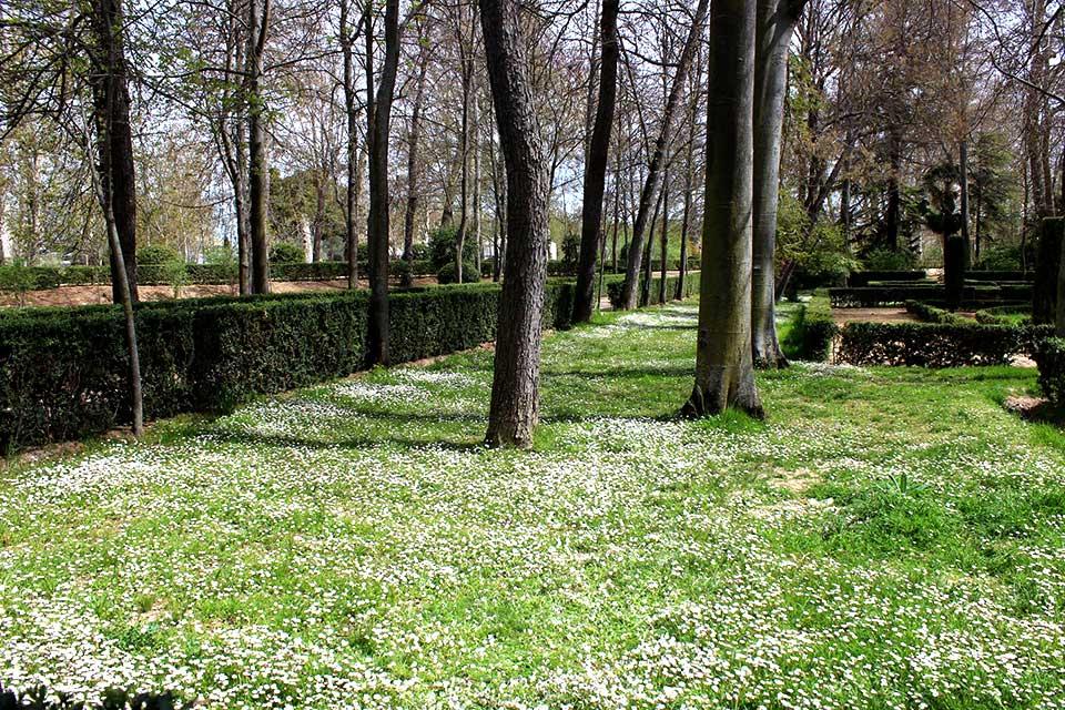 Aranjues Trädgård